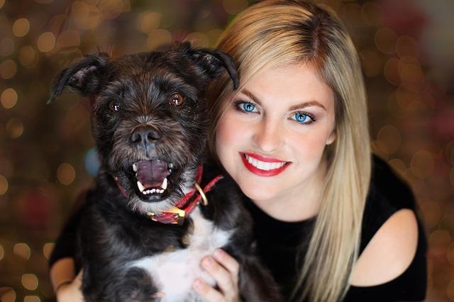 Auch dieser Hund zog an der Leine vor nicht allzu langer Zeit. Wie dieses glückliche Frauchen ihren Hund zu mehr Leinführigkeit trainieren konnte erfährst du jetzt.